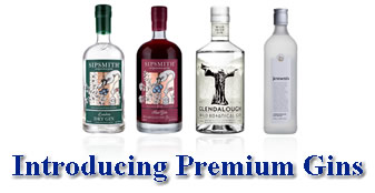 Introducing Premium Gins
