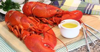 Lobster & Wild Boar Pate Special